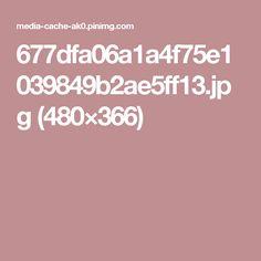 677dfa06a1a4f75e1039849b2ae5ff13.jpg (480×366)
