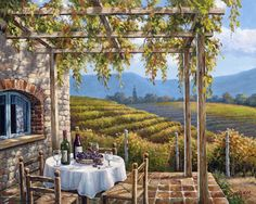 """Vineyard Patio"" by Sung Kim"