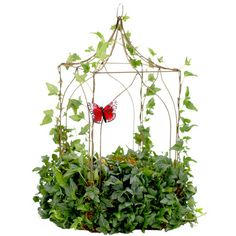 I pinned this Ivy Gazebo Topiary from the Schubert Nursery event at Joss and Main!