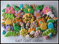 Spring and Bug Cookie Platter