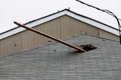 Scary. 2x4 impaled a roof in tornado, Dallas, TX. April 3, 2012
