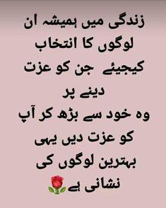 Diy Cleaning Wipes, Diy Cleaning Products, Deep Words, True Words, Urdu Quotes, Qoutes, Urdu Love Words, Hand Embroidery Videos, Best Urdu Poetry Images