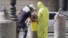 CORRIERE TV - Api al Quirinale, l'apicoltore: Sedate e portate via. Bee Safe, Tv, Tvs, Television Set, Television