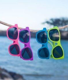 Navigators Sunglasses