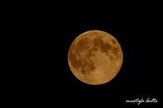 Moonlight by Mustafa Balta