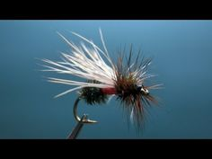 [HD] Fly tying / Wright's Royal.