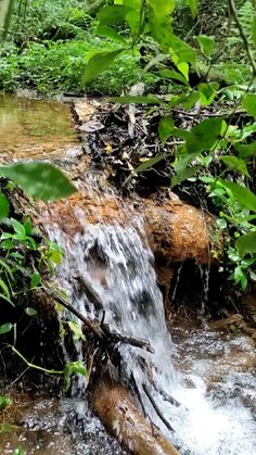 Natural Medicine, Waterfall, Outdoor, Design, Finger Crochet, Adorable Couples, Diy Wood Projects, Amazing Nature, Waterfalls