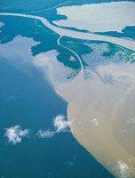 En el delta de los grandes ríos se mezclan las aguas marinas con las dulces y son los lugares que reciben mayores aportes de sedimentos continentales. Delta del río Atrato.