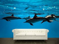 "Wall STICKER MURAL dolphins sea ocean underwater blue decole film poster fantasy 158x95""/4x2,4m"