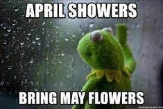 april showers kermit meme Wtf Funny, Funny Texts, Funny Jokes, Funny Gifs, Funny Mom Quotes, Funny Quotes About Life, Kermit Face, Funny Images, Funny Pictures