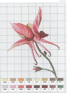 [flor-ponto-cruz-grafico-24%255B2%255D.jpg]