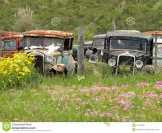 Vintage Cars Abandoned - Download From Over 61 Million High Quality Stock Photos, Images, Vectors. Sign up for FREE today. Image: 13440956
