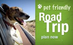 """Here's a website that will help you when you travel t know what facilities are """"pet friendly""""."""
