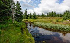 Jeden z mnoha potůčků, rezervace Černá jezírka Czech Republic, River, Mountains, Nature, Outdoor, Pictures, Outdoors, Naturaleza, Outdoor Games