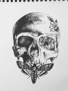 #death's-head #hawkmoth #skull #sketch