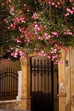 Beautiful entrance in Beirut, Lebanon