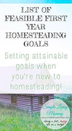 If you're interested in homesteading, you probably have big dreams, but don't know where to start. This family lays out goals you can reach in your first year of homesteading that will motivate you to make the most of your new lifestyle!