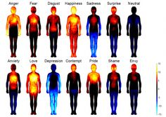 Human emotions mapped for the first time, shows where we feel love, fear, and shame.