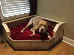 Pallet Dog Bed / Corner Fit / Handcrafted Dog Bed / Corner Dog Bed
