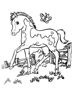 horse pictures to color horse coloring page young foals play in