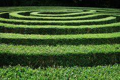 Laberinto geométrico verde. | Matemolivares
