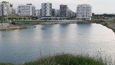 See und Seestadt Aspern