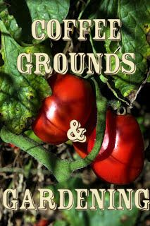 Gardening with Coffee Grounds @ its-a-green-life Diy Garden, Edible Garden, Dream Garden, Lawn And Garden, Garden Projects, Garden Plants, Garden Landscaping, Garden Ideas, Garden Urns