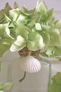Bottle neck wrapped in twine with shell. Bedroom Green, Pantone Color, Blue Green, Shades Of Green, Green Colors, Spring Green, Cottages By The Sea, Honeydew, Color Themes