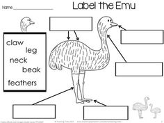 Australia for Kinder Kids FREEBIE contains a Label the Emu activity, Counting by…