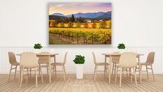 Wine Country Print, Napa Valley Photo, California Wine Country, Napa Autumn Canvas, Wine Vineyard, Gallery Wrap, Winery, Large Wall Decor