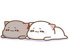 Cute Anime Cat, Cute Cat Gif, Cute Cats, Cute Kawaii Animals, Kawaii Cat, Chibi Cat, Cute Chibi, Gif Bonito, Gif Lindos