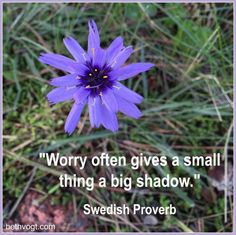 Stepping Out from the Shadow of Worry ~ Beth K. Vogt