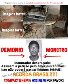 VERY GRAPHIC IMAGE: Animal Rape Case In Brazil – Please Sign Petition
