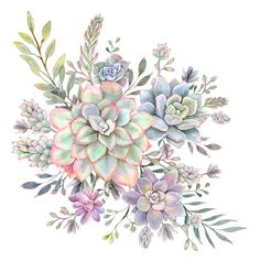 Succulent Watercolor 8 Artwork Print by Cali_nature_ Dalleh - LARGE Succulents Drawing, Watercolor Succulents, Watercolor Flowers, Watercolor Paintings, Watercolor Tattoo, Succulents Painting, Watercolour, Succulent Tattoo, Framed Art Prints