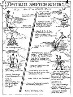 So many reasons for a good hiking stick - who knew!