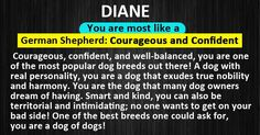 What Is Your Dog Personality?
