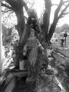 Figura religiosa cubierta de maleza