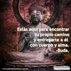 ... Estás aquí para encontrar tu propio camino y entregarte a él con cuerpo y alma. Buda.