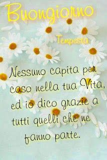 Buongiorno bellissimo a te - BuongiornoA. Italian Quotes, Morning Blessings, Day For Night, Good Morning Quotes, Carpe Diem, Humor, Genere, Facebook, Hobby
