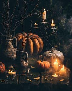 Samhain Halloween, Halloween Town, Holidays Halloween, Vintage Halloween, Halloween Pumpkins, Halloween Decorations, Dark Autumn, Autumn Cozy, Autumn Witch