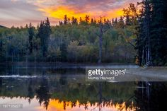 View this Sibbald Lake As Seen In The Fall At Sunrise Nice Reflections Of The Sky And Trees In The Water stock photo. Find premium, high-resolution images in Getty Images' library. Georgia On My Mind, Wilderness, Reflection, Sunrise, Sky, Stock Photos, Mountains, Nice, Fall