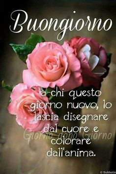 Buongiorno Immagini belle per Whatsapp 100 Morning Quotes Images, Good Morning Quotes, Rose In Italian, Day For Night, Good Night, Good Morning Flowers Rose, Italian Greetings, Italian Quotes, Beautiful Morning