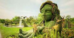 Living plant sculptures at the montreal botanical gardens, Quebec, Canada Topiary Garden, Garden Art, Garden Plants, Garden Design, Garden Types, Green Garden, Montreal Botanical Garden, Botanical Gardens, Botanical Art