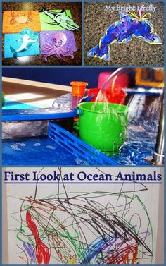 First Look at Ocean Animals for Toddlers. Dolphin art and lacing card craft. Coral reef. Color matching and sorting.