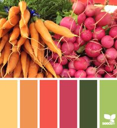 produced hues - color palette from Design Seeds Colour Pallette, Color Palate, Colour Schemes, Color Combos, Color Patterns, Color Palette Green, Color Red, Color Harmony, Design Seeds