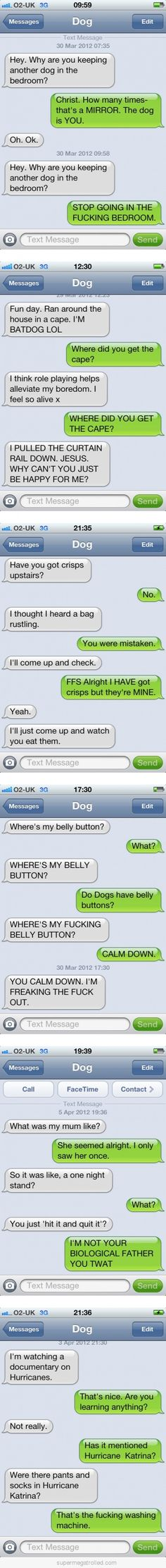 Messaging a dog.