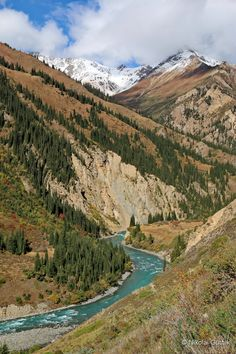 Forests with Tien Shan fir trees, violent rivers with waterfalls, alpine green valley - all characteristic of the Kyrgyz nature. Travel Kyrgyzstan