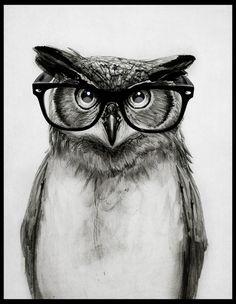 'Mr. Owl' by Isaiah K. Stephens