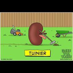 Leon van Nier-hop gee hierdie spotprent 5/5.  #IVV #Jokes #Afrikaans  #nier #kidney #ideesvolvrees #ivv Afrikaans Quotes, Funny Memes, Jokes, South Africa, Family Guy, Bible, Van, African, Instagram