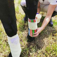15 Horse Hacks That Prove Horseback Riders Are Genius Posted by Paige Cerulli 11 months When horseback riders have problems, they get creative and com Horse Care Tips, Horse Facts, Horse Grooming, All About Horses, Horse Training, Horse Love, Show Horses, Just In Case, 1